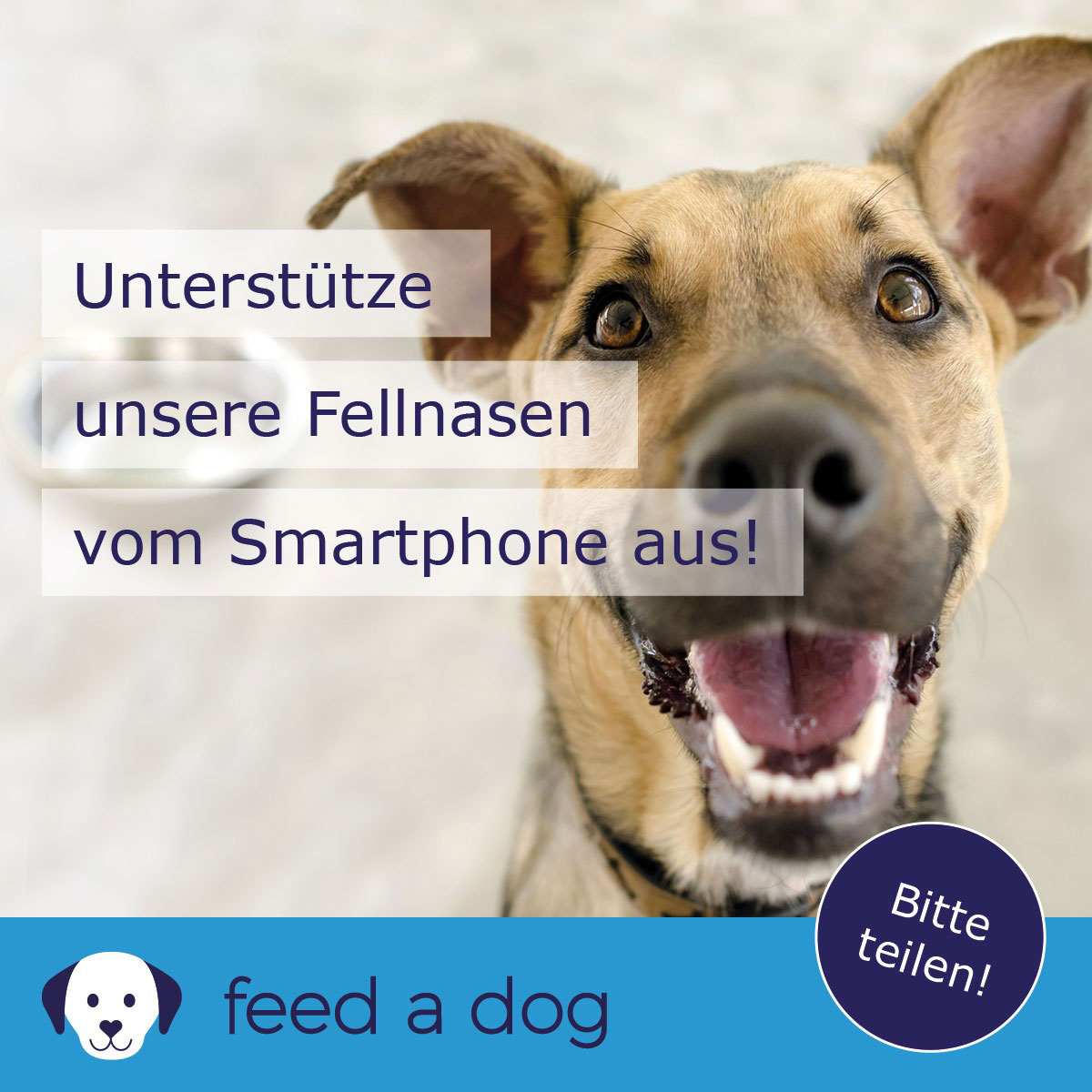 Feedadog Fellnasen Standard gross